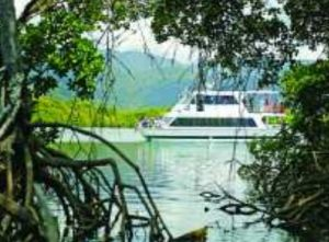 Cairns Harbour Cruises - Tourism Brisbane