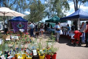 Fernvale Country Markets - Tourism Brisbane