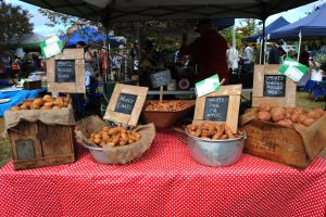 Lawson Park Markets - Tourism Brisbane